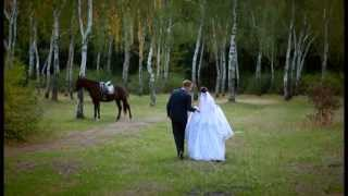 Свадьба Андрея и Наташа, 3 октября 2014 года.