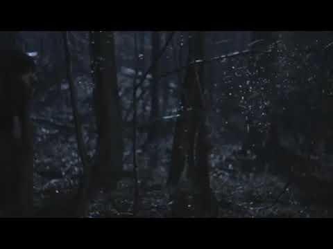 Teen Wolf Temporada 1 Capitulo 1 3/6