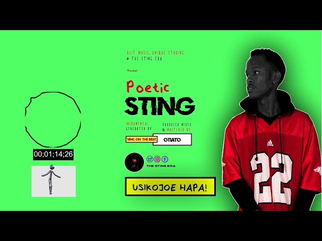 Poetic Sting - Usikojoe Hapa (Visualizer)