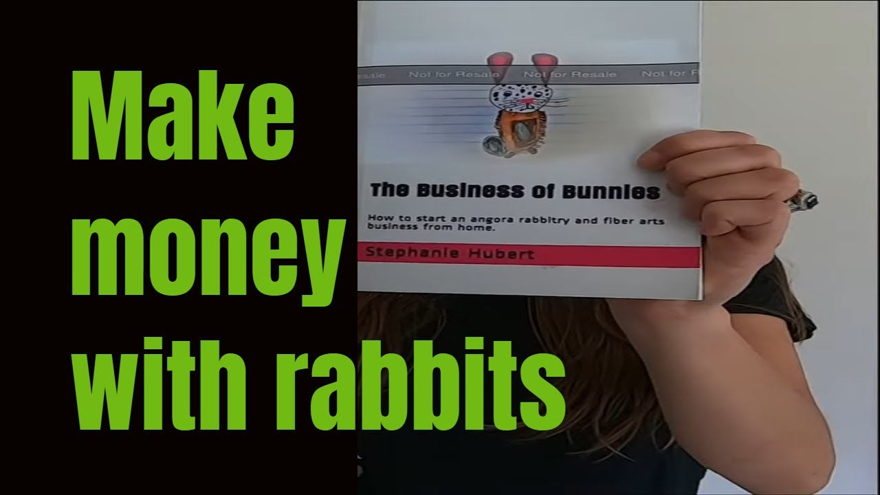 How to make money with rabbits.