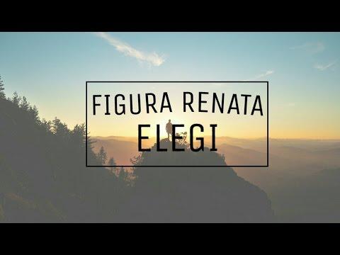 FIGURA RENATA - ELEGI