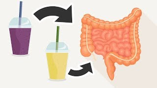 2 Smoothies That Will Naturally Cleanse Your Colon and Flush Excess Toxins
