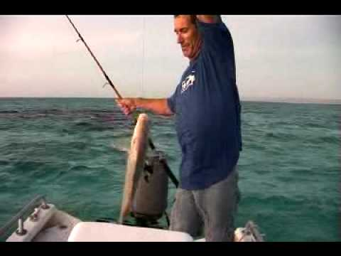 HGM Holtzy's Epic Boat Trip pt 3.mp4