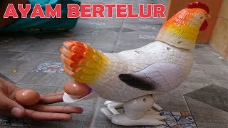 Video Ayam Bertelur Banyak | Ayam Mainan Petelur | Laying Hens download MP3, 3GP, MP4, WEBM, AVI, FLV Juli 2018