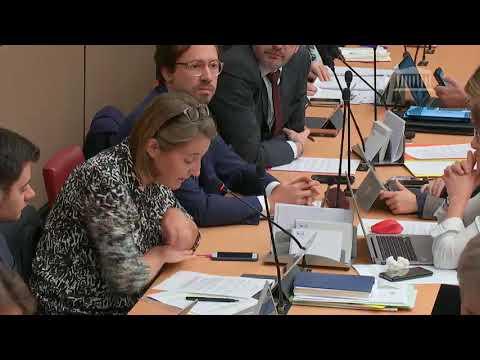 Commission des Affaires Economiques - 14 novembre 2018