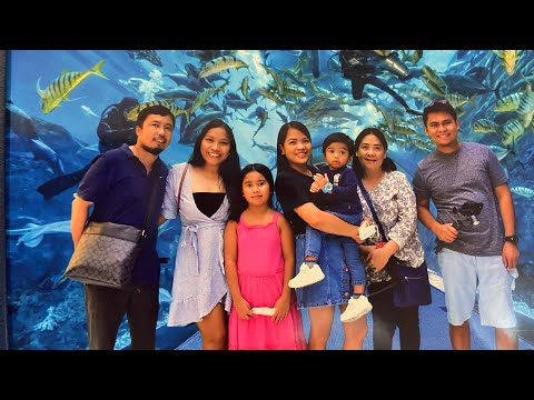 Dubai Aquarium and Underwater Zoo | Eid Al Adha | Sofia Donelle Family Vlog #familytrip #mydubai
