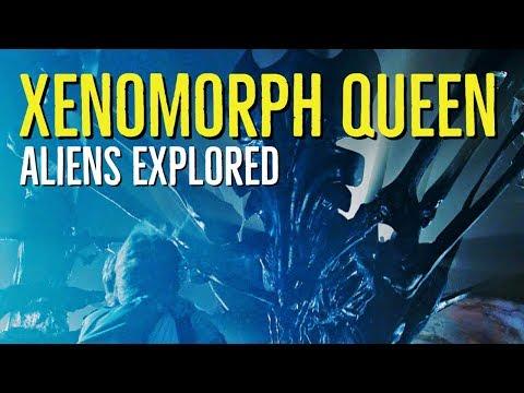 Xenomorph Queen (Aliens Explored)