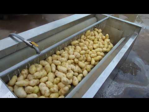 2017 best stainless steel brush potato/carrot/onion cleaning machine毛刷辊去皮机视频