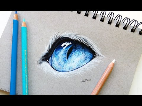 realistic-cat-eye-drawing-with-colored-pencil-|-leontine-van-vliet