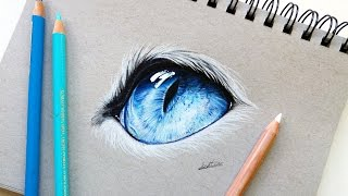 Realistic cat eye drawing with colored pencil | Leontine van vliet