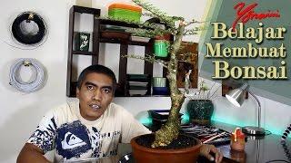 Bonsai Kawista #06  - Pruning, Wiring & Styling