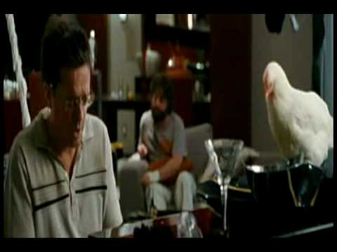 "The Hangover - Stu's song ""Doug"""
