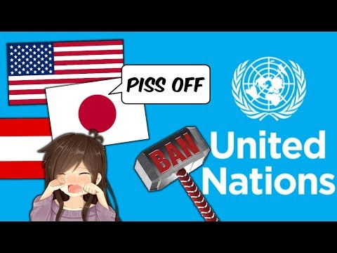 United Nations Proposal to Ban Anime NOT APPROVED - Noble News