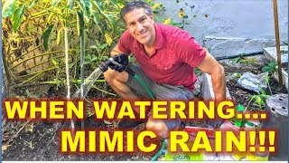 Part 3 of 4.  Irrigation = Mimic Rain Systems Are Best!