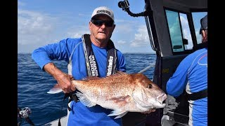 The FAR NORTH Produced This HUGE Snapper On LIGHT TACKLE.. NZ