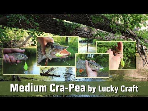 На малой реке с Medium Cra-Pea