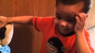 Teddy Bear goes potty