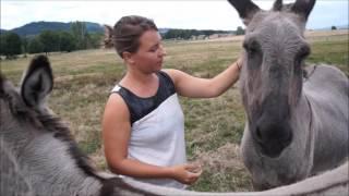 Vlog ma visite au Refuge ADADA