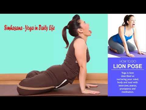fayereagan — how to do lion pose yoga  simhasana and its