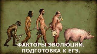 Эволюция. Направляющие и не направляющие факторы эволюции,