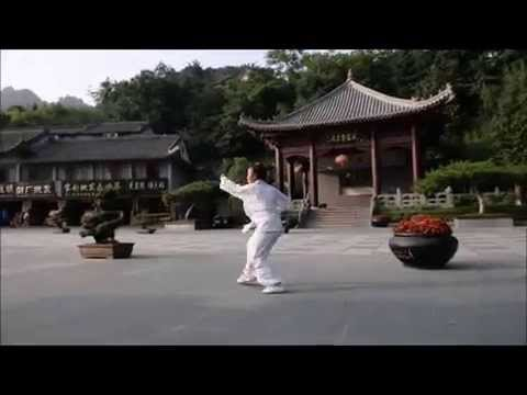 Wudang Master Chen