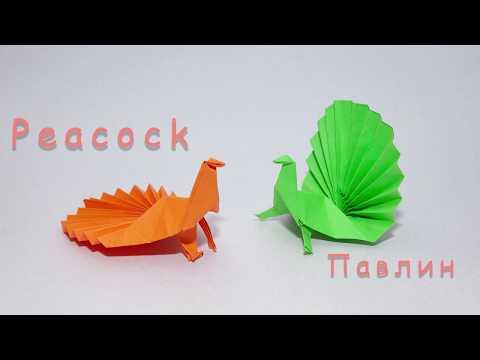 Красивый павлин оригами из бумаги   Origami Peacock