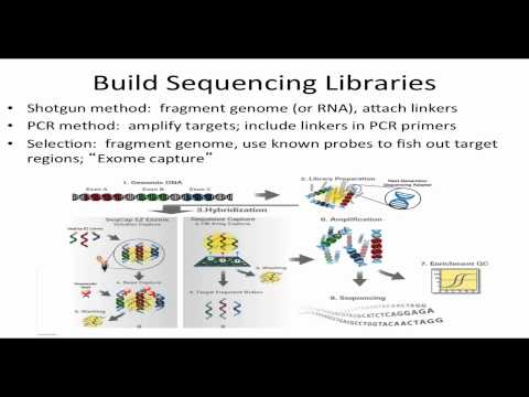 Next Generation DNA Sequencing