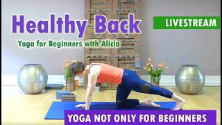 Healthy Back | Back Pain Relief,  Stretching for Bad Back, Bad Back Exercise at Home