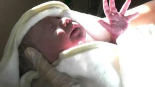 Он только что родился!.MOV