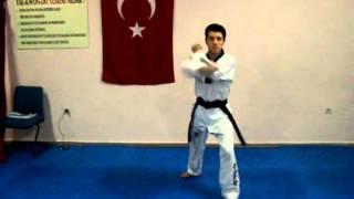 Taekwondo beyaz kuşak poomse