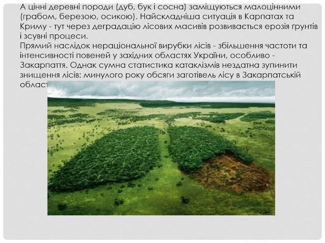 10 22   Макар Володимир Степанович