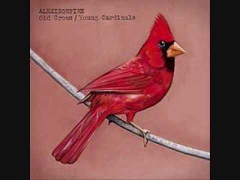 Alexisonfire - Young Cardinals mp3 ke stažení