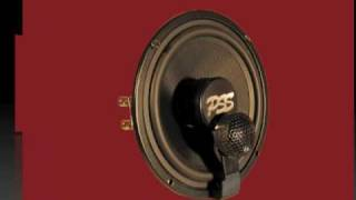 cdt audio signature pss 6imb braxial speaker