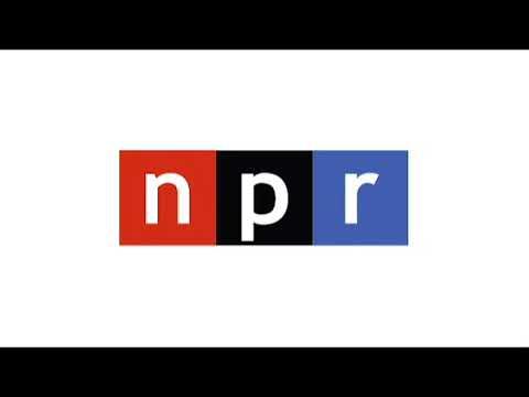 Ali Shihabi discusses the imperative behind Saudi Arabia's anti-corruption drive on NPR