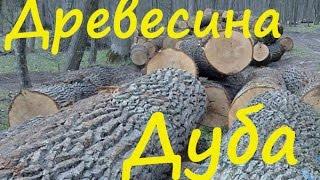 видео Виды древесины в паркетной доске