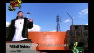 YouTube動画:Super Star / PitBull Fighter