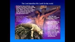 Hebrew Roots - The Sacrifice Lamb -  Part 2