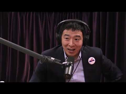 Student Debt Solution - Andrew Yang - Joe Rogan