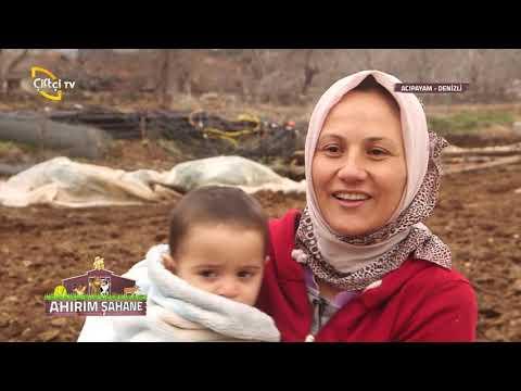 Ahırım Şahane - Acıpayam Denizli'de Ailelerimiz İle Buluşuyor