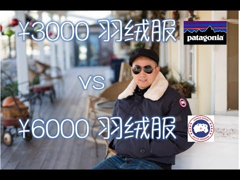 对比一下3千元和6千元的羽绒服!Canada Goose Vs Patagonia Down Parkas