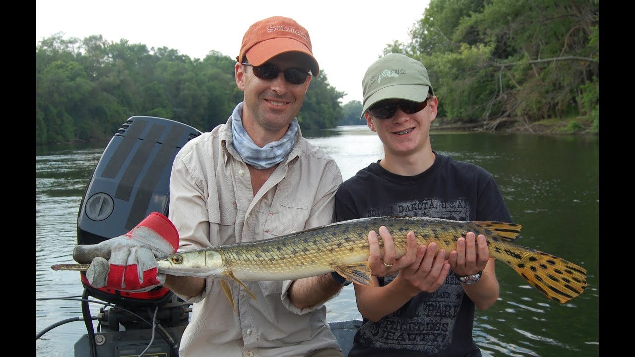 Fly fishing for gar with ripple guide service youtube for Fly fishing indiana