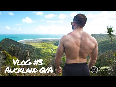 Should YOU do cardio or GAIN weight + more from New Zealand's Q/A.