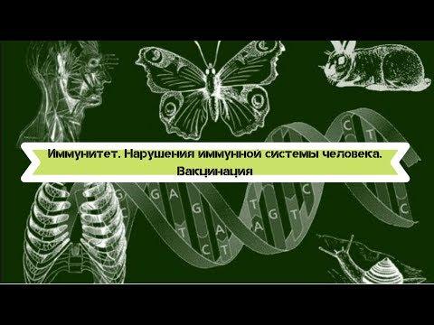 Биология 8 класс $16 Иммунитет. Нарушения иммунной системы человека. Вакцинация
