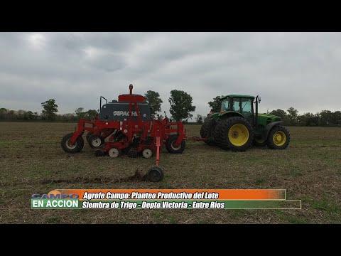 Jordan Esterri - Asesor Técnico Comercial Agrofé Campo - Siembra de Trigo en Victoria