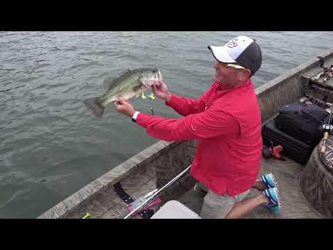 Bass Fishing - Busting Pickwick Lake Post Spawn Bass