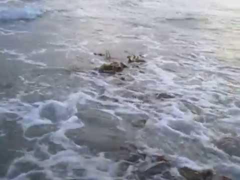 High Tide At Huntington Beach!