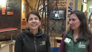 Much to See at the Albany Pine Bush Discovery Center