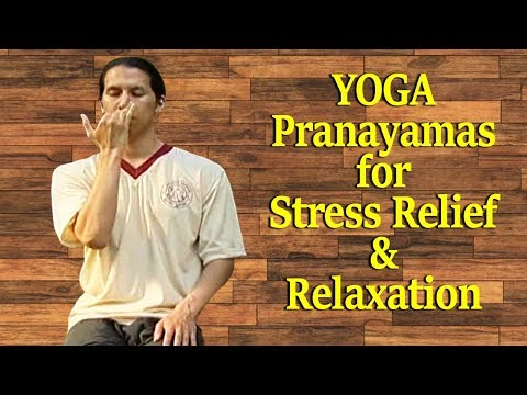 Yoga for Beginners   Breathing Exercises for Stress Relief and Relaxation   Beginners Pranayama