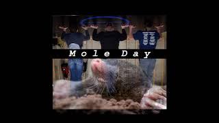 Mole Day/Go Molo (Feat. It's a wrestling move)