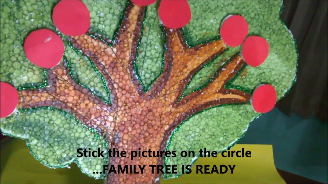 Family Tree Using Thermocol School Project For Kids Youtube